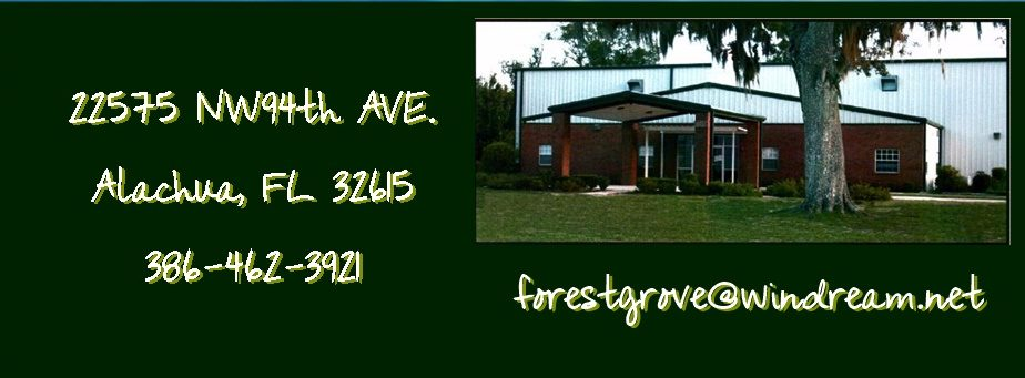 Address Banner Green